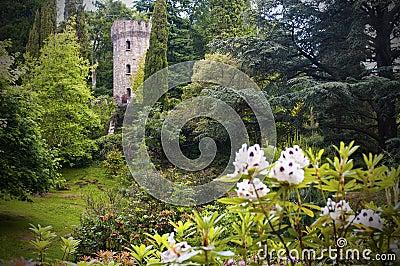 Förtrollad irländsk slott och trädgård
