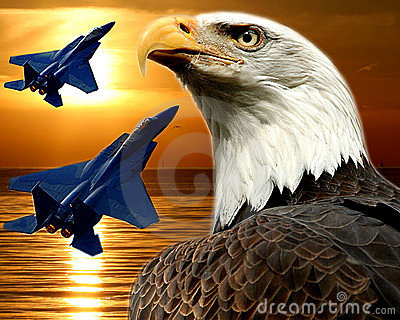 F-15 Falcon and Bald Eagle