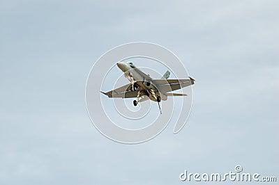 F/A-18 Hornet Landing