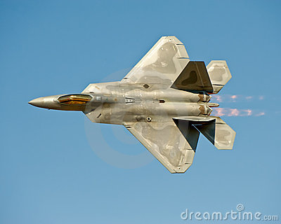 F-22 Raptor aircraft in flight