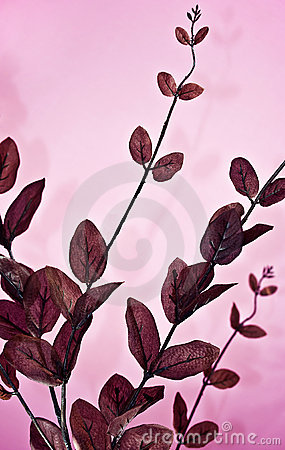 silk leaves
