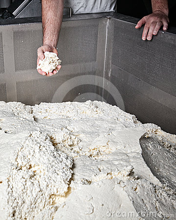 Fabryczny mozzarelli provola ricotta