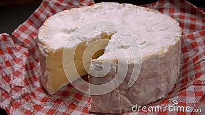 A faca levanta um setor do queijo redondo do camembert video estoque