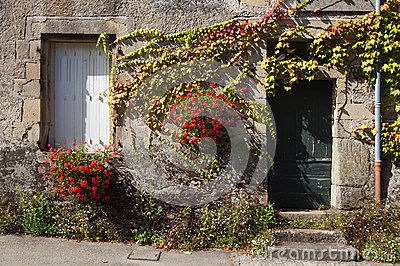 Facade of an old house, with flowers