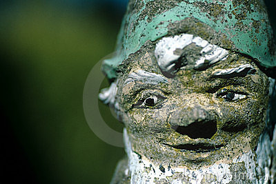 Face of Gnome.