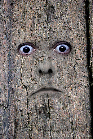 Face in wood 2