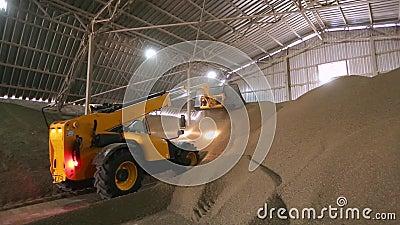 Facilidade enorme do armazenamento de colheitas agrícolas Alimentador telescópico com a concha que trabalha no estoque de maioria video estoque