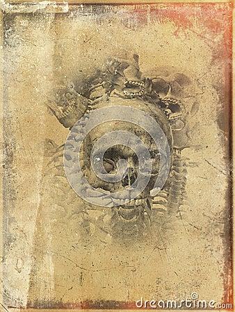 Faded worn skull