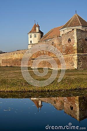 Free Fagaras Fortress - Romania Royalty Free Stock Images - 22584779