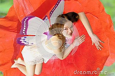 Fairies 11