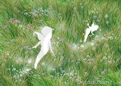 Fairies on the grass