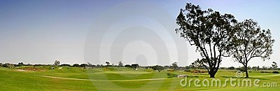 Fairway do golfe