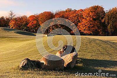 Fairway Fall Colors