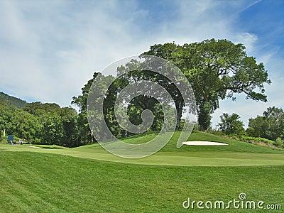 Fairway sand trap and trees Loch Lomond golf