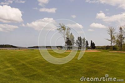 Fairway van het golf