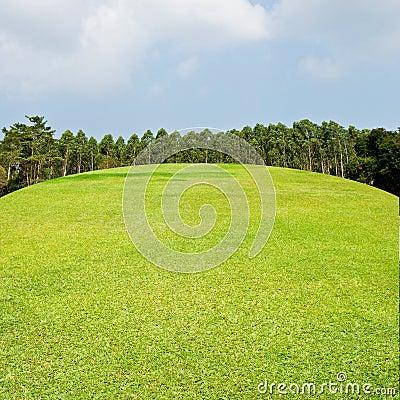Fairway van het golf met aardige hemel