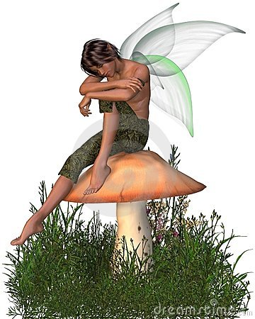 Fairy Boy Sitting on a Toadstool