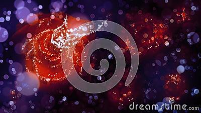 Fairy dust on night roses