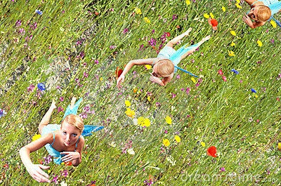Fairy flying over flowers