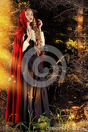 Free Fairy Forest Stock Photography - 41682592