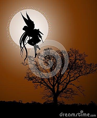 Fairy moonlight