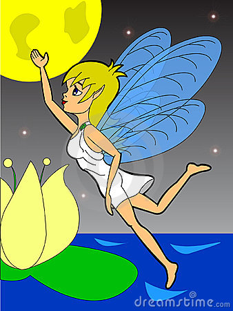 Fairy night fly