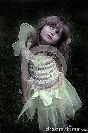Free Fairy Princess Stock Photos - 2417903