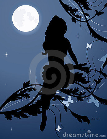 Fairy silhouette in night sky