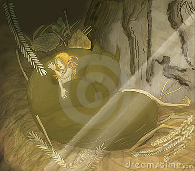 Fairy sonolento