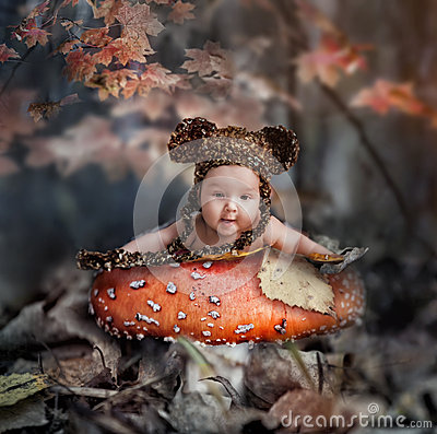 Fairy tale in autumn forest