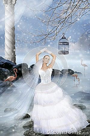 Fairy-tale fiancee