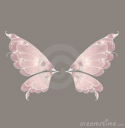 Fairy Wings Royalty Free Stock Photography Image 6650647