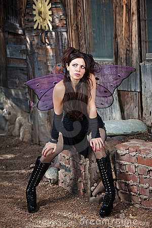 Free Fairy Wondering Royalty Free Stock Photography - 22447837