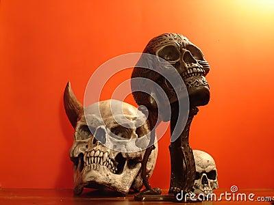 Fake cranium