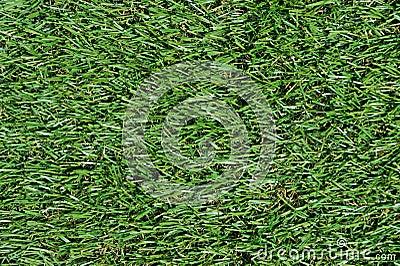 Fake Grass