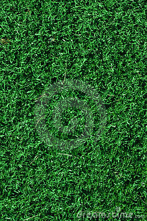Free Fake Grass Used On Sports Fields Royalty Free Stock Image - 13819336