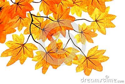 Fake leaf