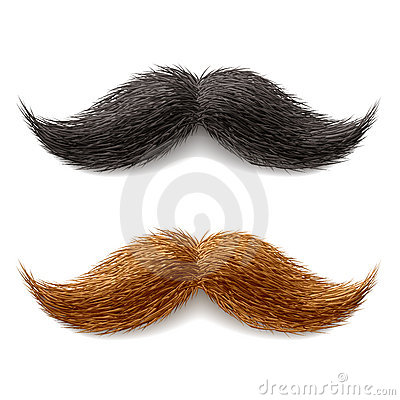 Free Fake Mustaches Stock Photo - 20553930