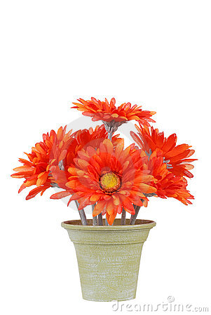 Fake pot of gerbera daisy flowers