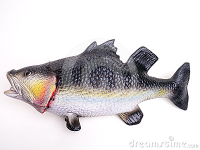 Fake Rubber Bass Fish Royalty Free Stock Photos - Image: 24593558