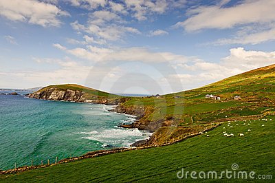 Falaises sur la péninsule de Dingle, Irlande