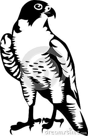 falcon black and white clipart