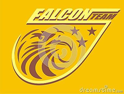 Falcon team