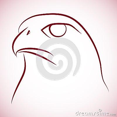 Falcone head