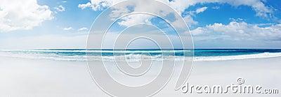 Falkland Islands Beach
