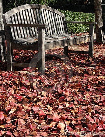 Into Fall
