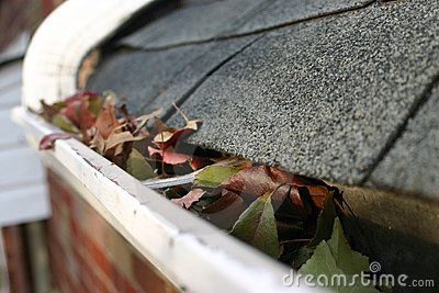Fall Cleanup - Leaves in Gutter 5