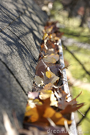 Free Fall Cleanup - Leaves In Gutter Royalty Free Stock Photography - 1503467