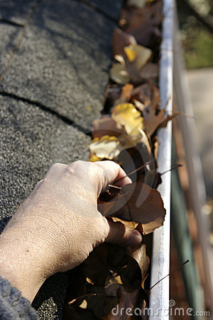 Free Fall Cleanup - Leaves In Gutter Royalty Free Stock Photography - 1503587