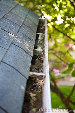 Free Fall Cleanup - Leaves In Gutter Royalty Free Stock Photography - 5299877